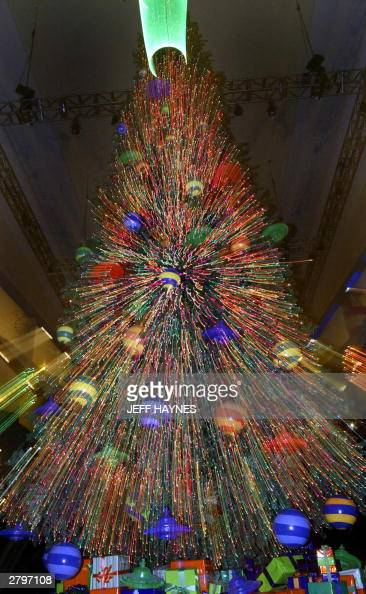 the largest christmas tree at the chris pictures getty images - Largest Christmas Tree