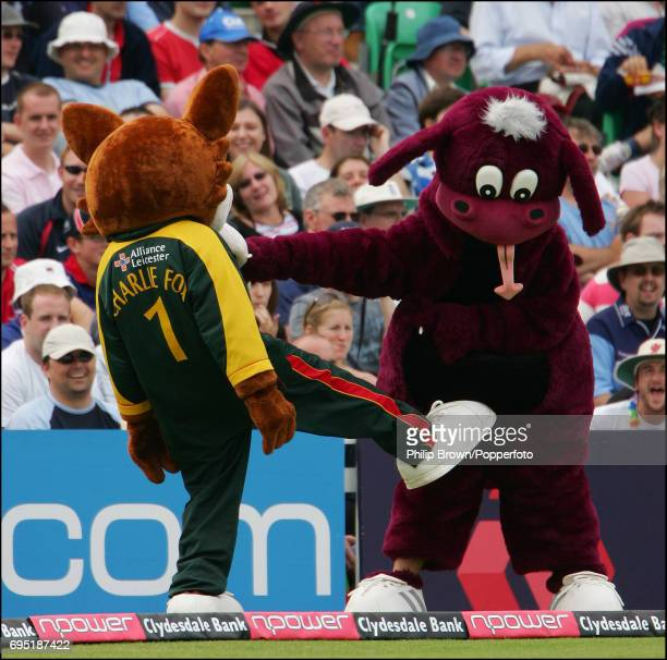 The Leicester and the Somerset mascots play fighting during the Twenty20 Cup semifinal between the Somerset Sabres and Leicestershire Foxes at the...