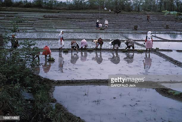 The Life Of Farmers In Iran Iran période 1960 Vie paysanne dans les montagnes ou plaines arides Un groupe de femmes vêtues de pantalons ou robes et...