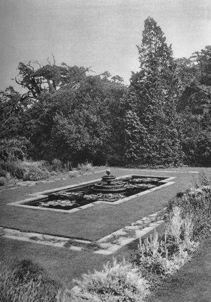 'The Lily Basin, The White Lodge, Richmond', 1926. '