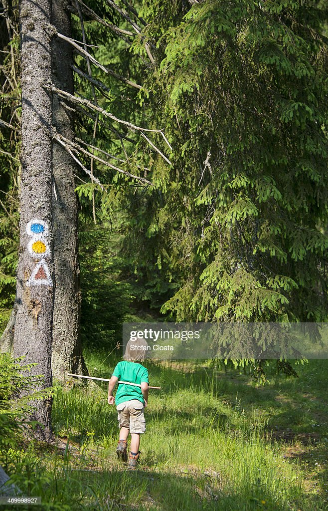 The little mountain man | Hiking in Transylvania