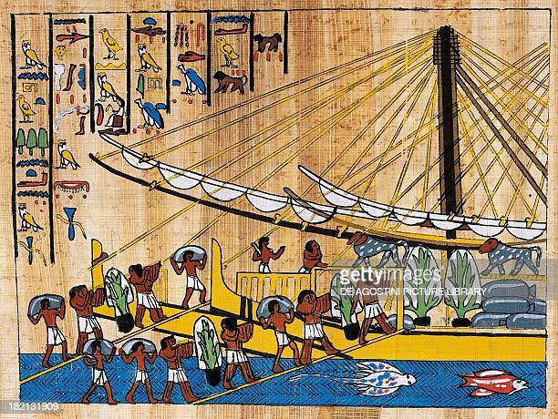 The loading of food for Hatshepsut's expedition to the Land of Punt papyrus reconstruction of a relief from the temple of Deir elBahari original...