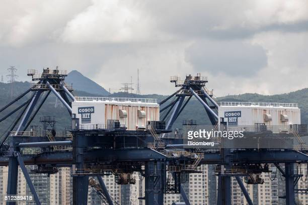 The logo for COSCOHIT Terminals Ltd a unit of Cosco Shipping Holdings Co is displayed on cranes at the Kwai Tsing Container Terminal in Hong Kong...
