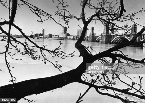 The Longfellow Bridge is framed by trees from the Cambridge side of a frozenover Charles River on Dec 28 1975