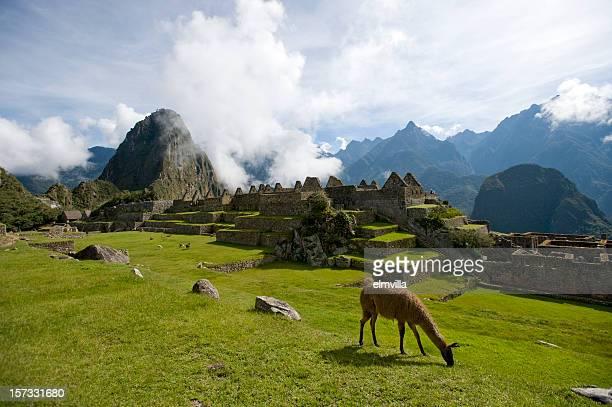 Rovine della perduta città Inca di Machu Picchu