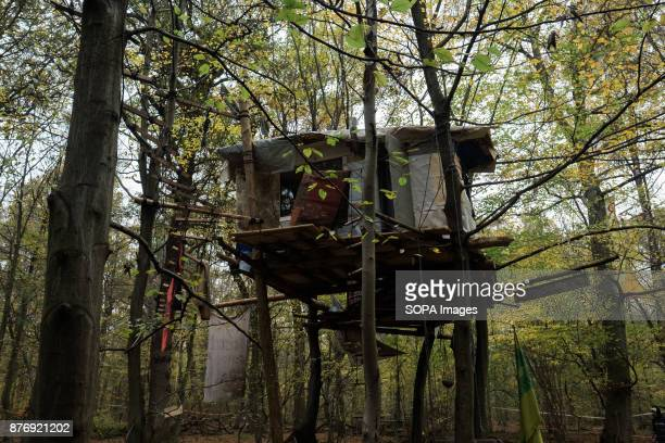 The lowest tree house in the forest houses are situated between two and 20 meters above the ground Starting in 2012 the Hambach Forest occupation...