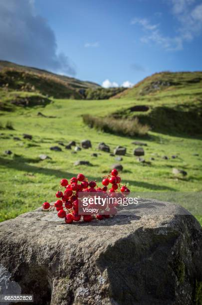 The lucky red berries, Fairy Glen, Isle of Skye, Scotland