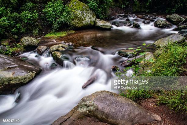 The Magdalena the last living river that runs through Mexico City flows on October 17 2017 Authorities of Mexico City's Magdalena Contreras borough...