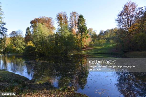 The main pond in autumn