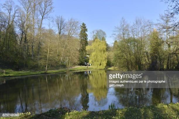 The main pond of Tounay-Solvay Park