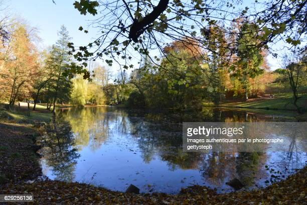 The main pond under shadow in autumn