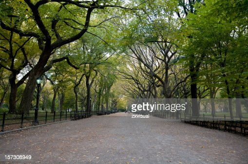 The Mall at Central Park in New York City
