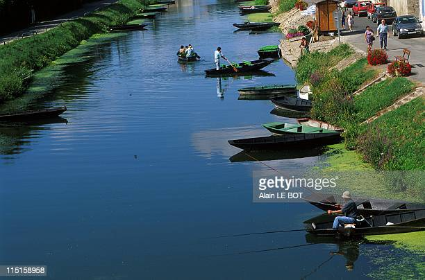 The Marais Poitevin in France in August 1999 In Coulon Boat Ride