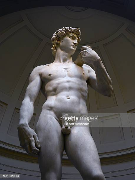 The marble statue of the Biblical hero David by the Italian artist Michelangelo is on display at the Galleria dell'Accademia Museum or Accademia...