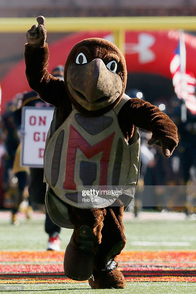 The Maryland Terrapins mascot runs on the field before the start of the Terrapins game against the Florida State Seminoles at Byrd Stadium on November 17, 2012 in College Park, Maryland.