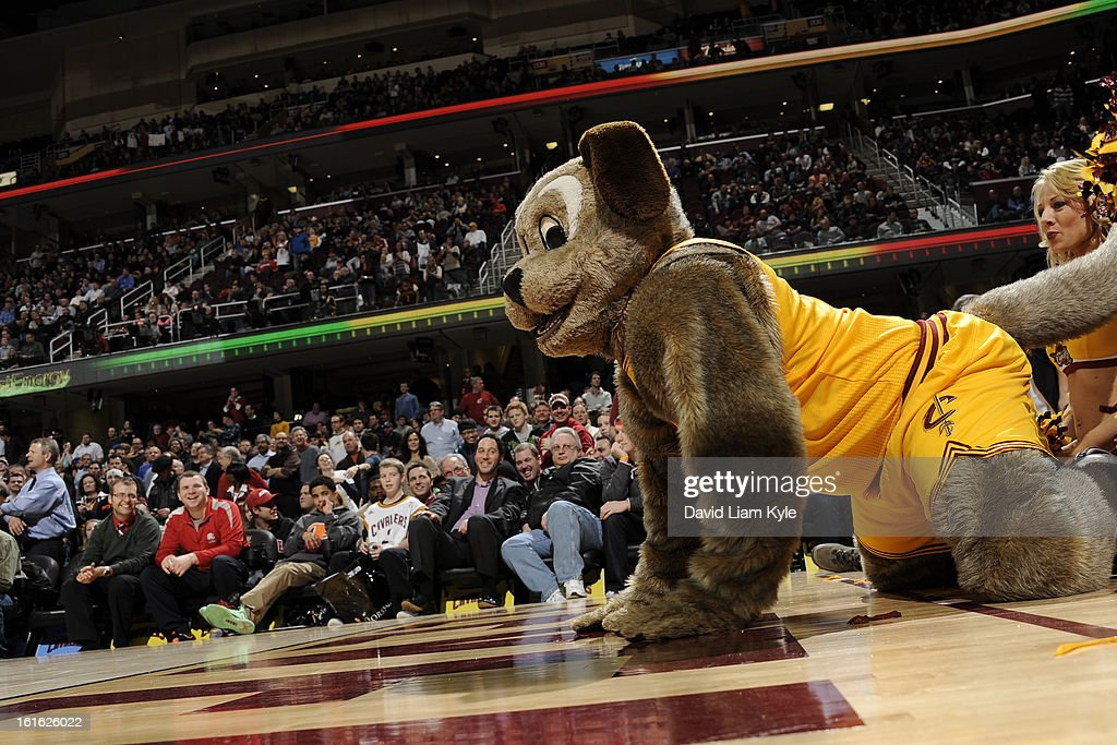 The mascot for the Cleveland Cavaliers crawls on the court against the Boston Celtics at The Quicken Loans Arena on January 22, 2013 in Cleveland, Ohio.