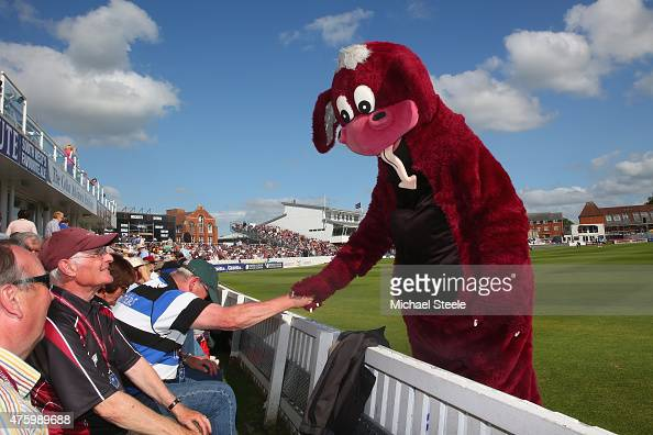 The mascot of Somerset greets the members during the NatWest T20 Blast match between Somerset and Hampshire at The County Ground on June 5 2015 in...