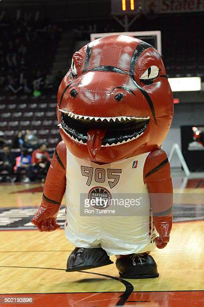 The mascot of the Raptors 905 drives to the basket against the Delaware 87ers at the Hershey Centre on December 19 2015 in Toronto Ontario Canada...