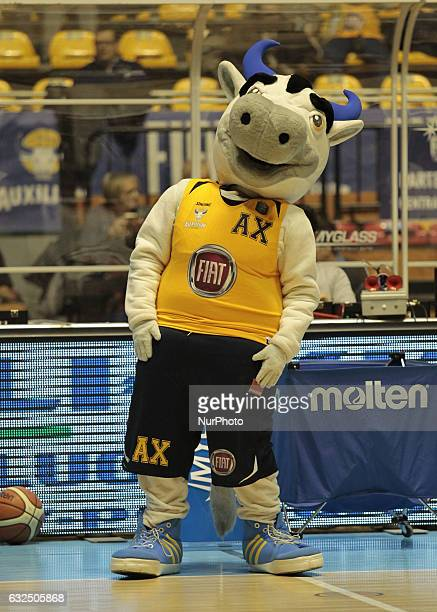 The mascotte of Fiat Torino during Italy Lega Basket of Serie A match between Fiat Torino v Sidigas Avellino in Turin on january 22 2017