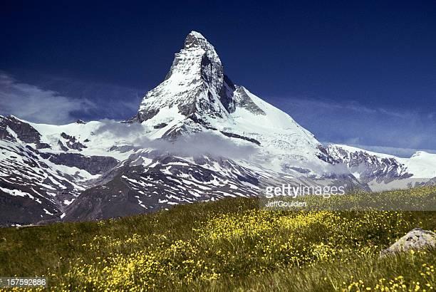 Das Matterhorn über Bergwiesen in den Vordergrund