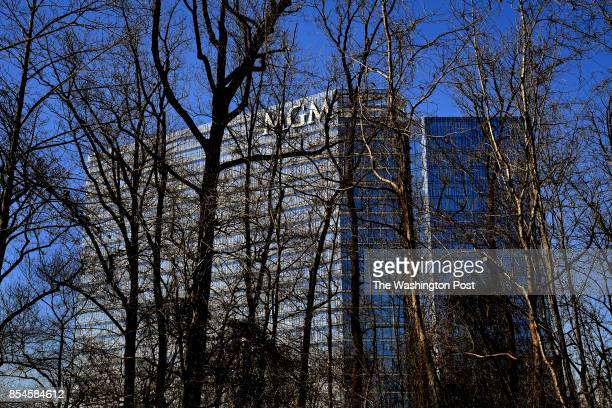 The MGM National Harbor Casino rises above the tree lines at Oxon Hill Manor which is next to the hotel Just on the other side of the building is a...