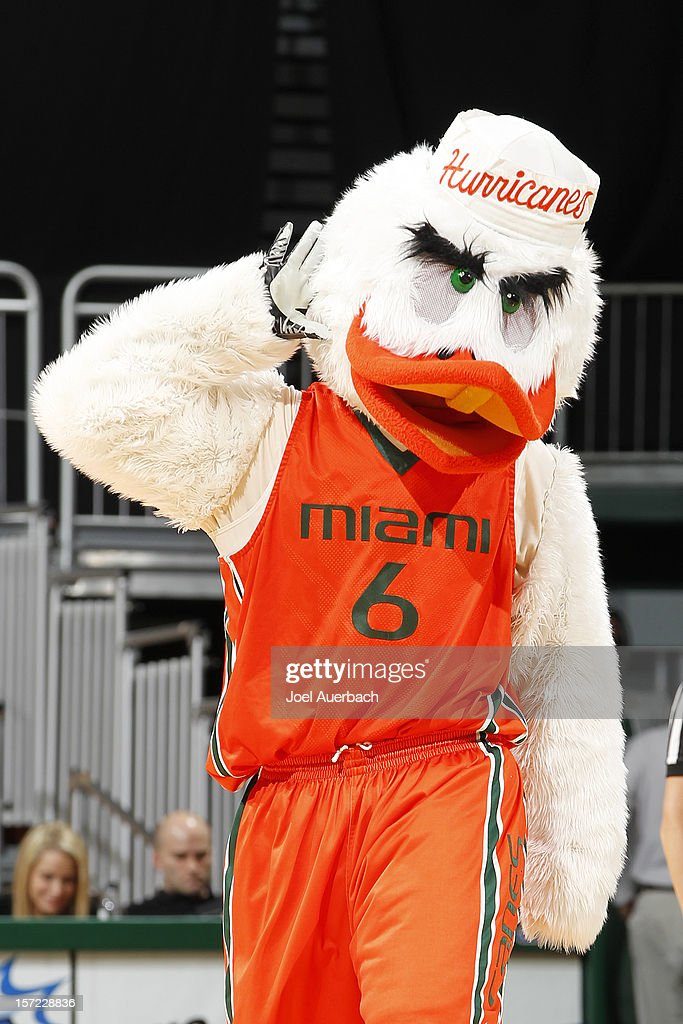 The Miami Hurricanes mascot, 'Sebastian the Ibis' gestures for the crowd late in the second half against the Penn State Lady Lions on November 29, 2012 at the BankUnited Center in Coral Gables, Florida. Miami defeated Penn State 69-65.