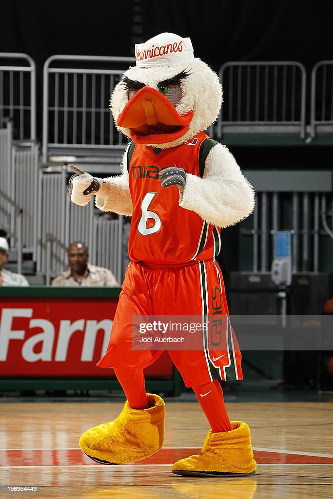 The Miami Hurricanes mascot 'Sebastian the Ibis' perform during ga break in action against of the Clemson Lady Tigers on January 3, 2013 at the BankUnited Center in Coral Gables, Florida. miami defeated Clemson 78-56.