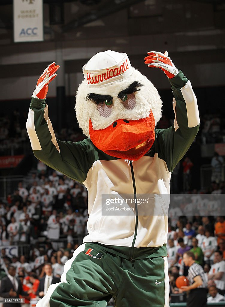 The Miami Hurricanes mascot 'Sebastian the Ibis' performs prior to the game against the Clemson Tigers on March 9, 2013 at the BankUnited Center in Coral Gables, Florida. The Hurricanes defeated the Tigers 62-49 and won the Atlantic Coast Conference Championship.