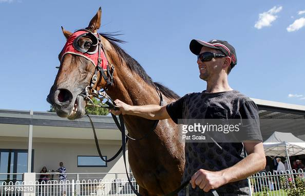 The Mighty Jrod after winning ClassicBet BM58 Handicap at Ararat Racecourse on February 27 2017 in Ararat Australia