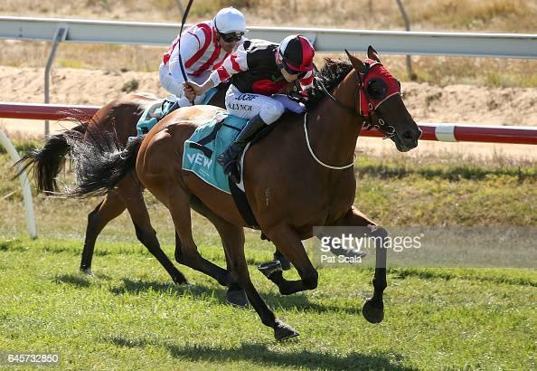 The Mighty Jrod ridden by Arron Lynch wins the ClassicBet BM58 Handicap at Ararat Racecourse on February 27 2017 in Ararat Australia