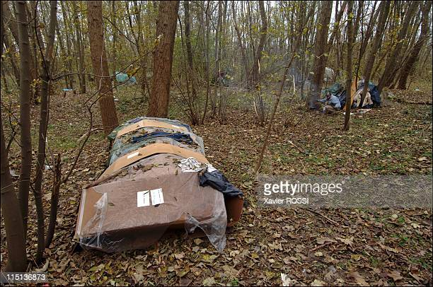 The migrants of Calais to reach Great Britain by all means in Calais France in March 2006 The Jungle Makeshift shelter in a small forest known as...