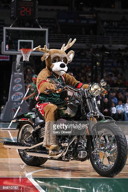 The Milwaukee Bucks mascot entertains the crowd during the game against the Toronto Raptors on January 5 2009 at the Bradley Center in Milwaukee...