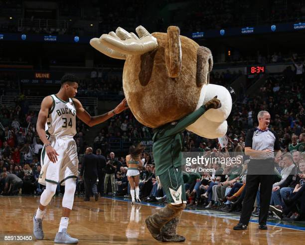 The Milwaukee Bucks mascot entertains the crowd during the game against the Utah Jazz on December 9 2017 at the BMO Harris Bradley Center in...