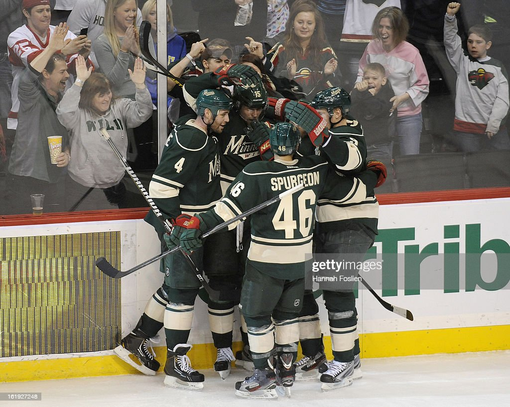 The Minnesota Wild celebrate a goal by Dany Heatley #15 of the Minnesota Wild during the second period of the game against the Detroit Red Wings on February 17, 2013 at Xcel Energy Center in St Paul, Minnesota.