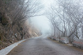 The misty road