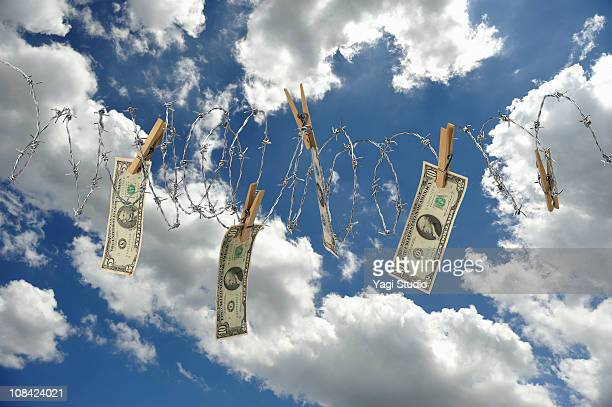 The money tempted by barbed wire