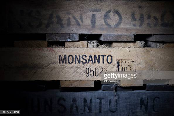 The Monsanto Co logo is displayed on a pallet at the Crop Protection Services facility in Manlius Illinois US on Friday March 20 2015 Monsanto Co is...