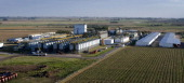 The Monsanto Co seeds plant stands near Rojas Argentina on Monday April 16 2012 Argentina the world's secondlargest exporter of corn will set...