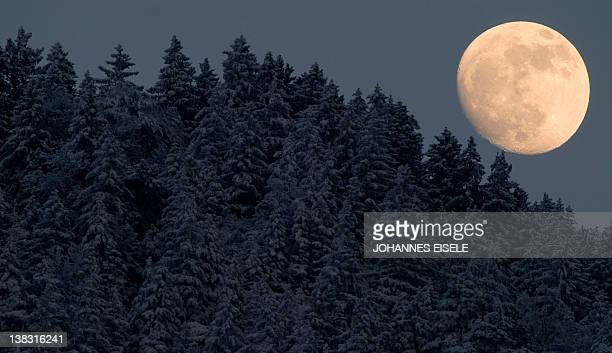 The moon raises next to snowcovered trees near GarmischPartenkirchen in southern Germany on February 5 2012 The Arctic cold snap that has hit Europe...