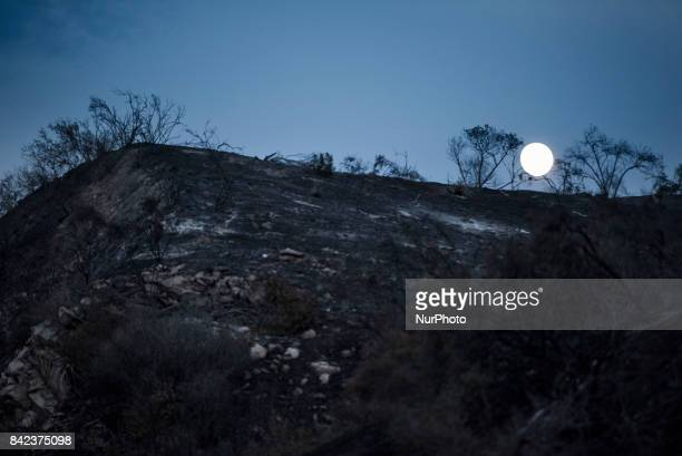 The moon rises over torched hills from the La Tuna fire in Los Angeles California On September 3 2017 Over 1000 firefighters battled the 7000acre La...