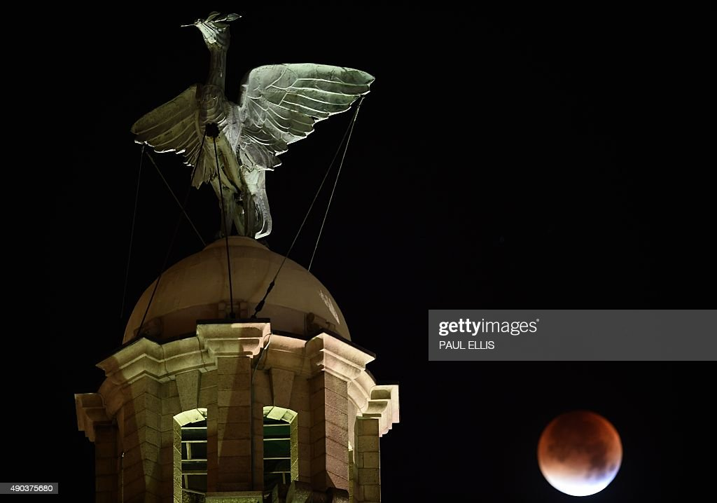 The moon turns red during a total eclipse, seen behind the iconic Liver Bird on the Liver Building in Liverpool, north west England, early on September 28, 2015. For the first time in decades, skygazers were in for the double spectacle on September 28 of a swollen 'supermoon' bathed in the blood-red light of a total eclipse.