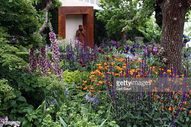 The Morgan Stanley Healthy Cities show garden designed by Chris Beardshaw and sponsored by Morgan Stanley is pictured on the press preview day of the...