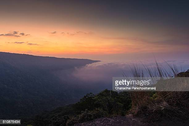 The morning scenery of cloud wave over the forest at Khao Yai, Thailand