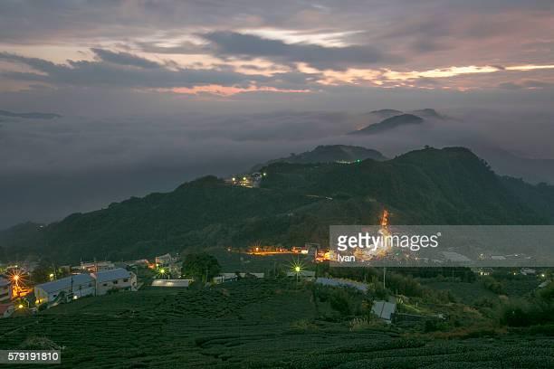 The Morning, Sun Rise of Tea Garden in Nantou of Taiwan