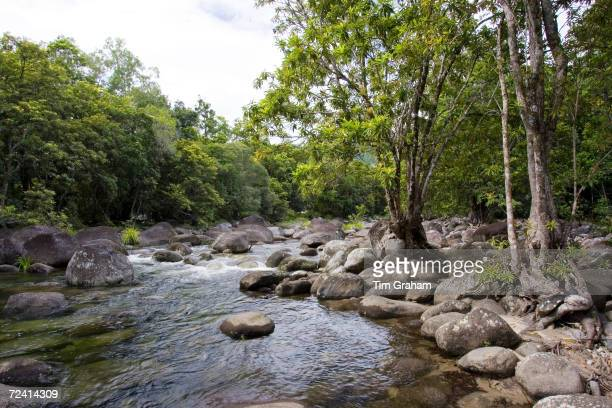 The Mossman River in the Daintree Rainforest Queensland Australia