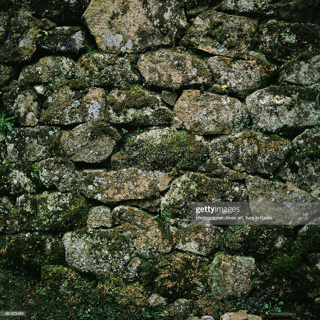 The mossy stone wall
