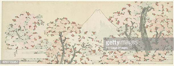 The Mount Fuji with Cherry Trees in Bloom Found in the collection of Rijksmuseum Amsterdam