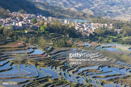 The mountain of rice terrace at Yuanyang, China
