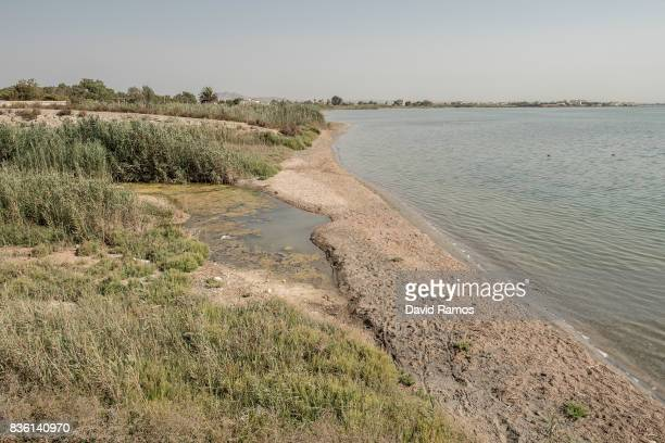 The mouth of the La Rambla de Albujon which collects waste waters from plots of land of 'El Campo de Cartagena' in seen in El Mar Menor on July 28...
