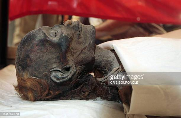 The mummified remains of Queen Hatshepsut wetnurse SitreIn lay in a glass case moments before being unveiled at the Egiptian Museum in Cairo 27 June...